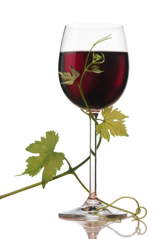Домашнее виноградное вино способ приготовления